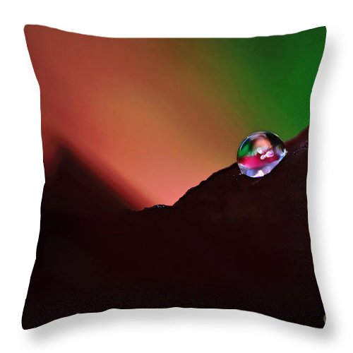 Photography Throw Pillow featuring the photograph Water Droplet At Dusk by Kaye Menner