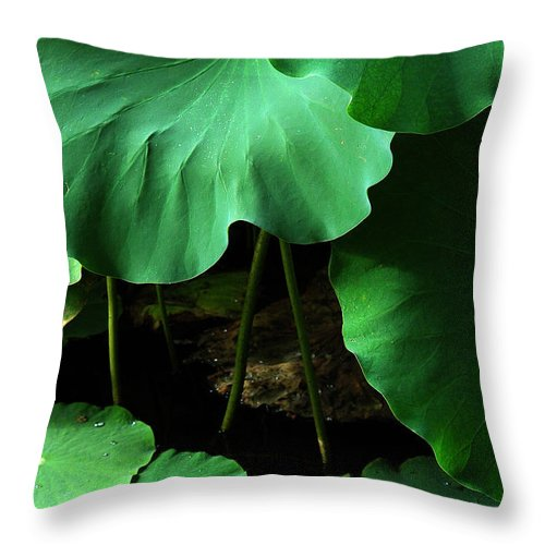 Water Throw Pillow featuring the photograph Water Lilies Of Green by Mike Nellums