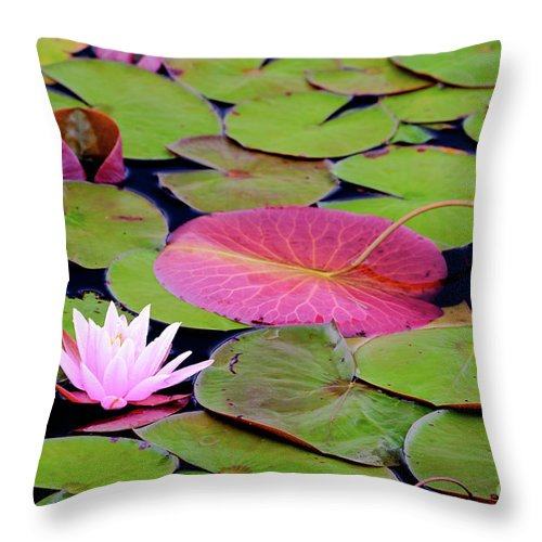 Flowers Throw Pillow featuring the photograph Water Lilies by Susan Cole Kelly