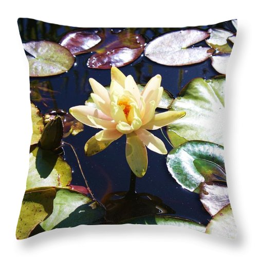 Ponds Throw Pillow featuring the photograph Water Lilly by Caroline Lomeli