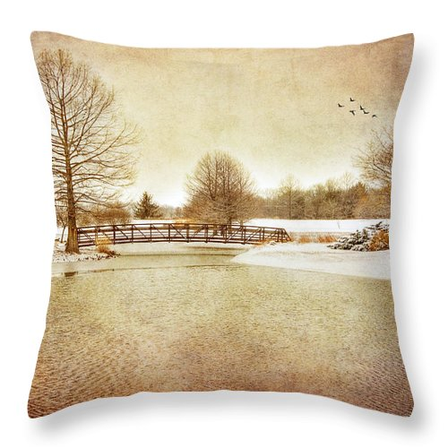 Lake Throw Pillow featuring the photograph Water Under The Bridge by Mary Timman