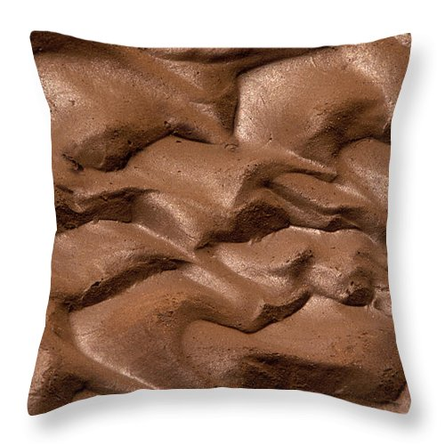 Bronstein Throw Pillow featuring the photograph Wave Of Mud by Sandra Bronstein
