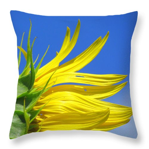 Sunflowers Throw Pillow featuring the photograph Waving Goodbye To Summer by Lori Pessin Lafargue