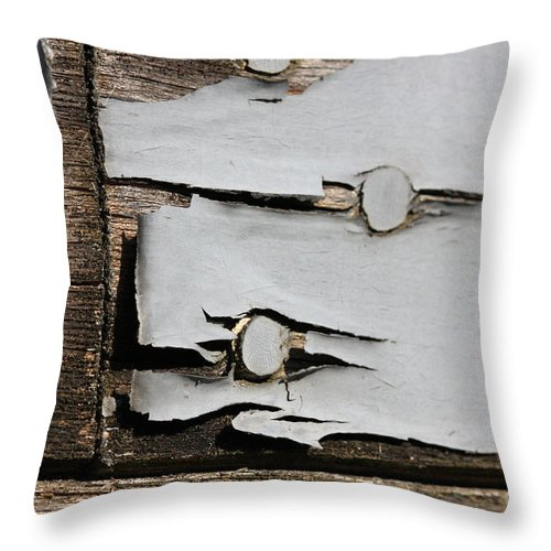 Abstract Throw Pillow featuring the photograph Weathered by Todd Blanchard