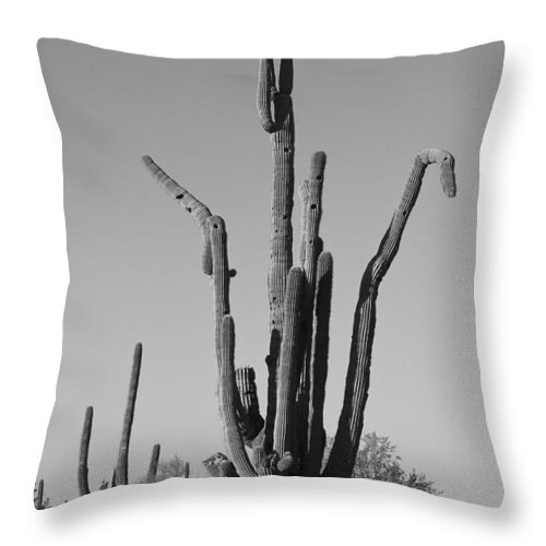 Weird Throw Pillow featuring the photograph Weird Giant Saguaro Cactus In Black And White by James BO Insogna