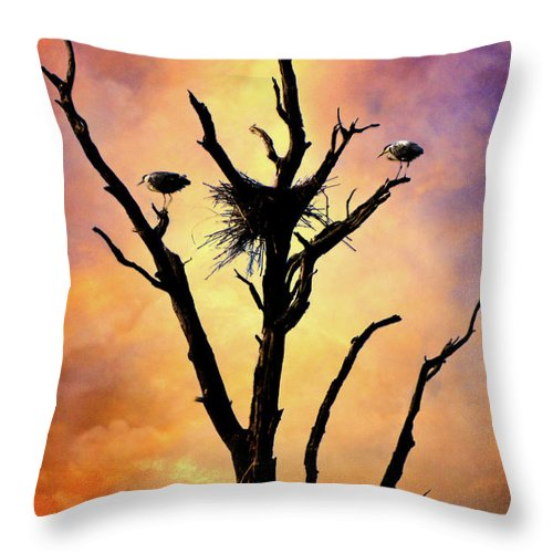 Birds Throw Pillow featuring the photograph Westward Watch by Chris Lord