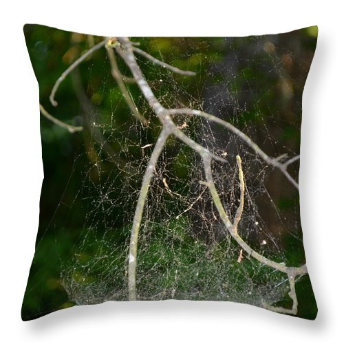 Spiderweb Throw Pillow featuring the photograph What Webs We Weave by Maria Urso