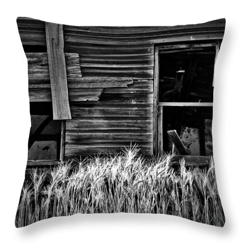 Street Photography Photographs Framed Prints Photographs Framed Prints Throw Pillow featuring the photograph Wheat To Meet by The Artist Project