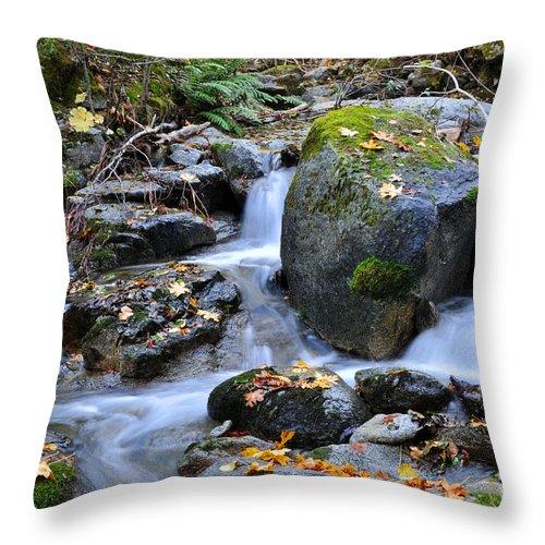 Autumn Throw Pillow featuring the photograph Whisketown Stream In Autumn by Gary Whitton
