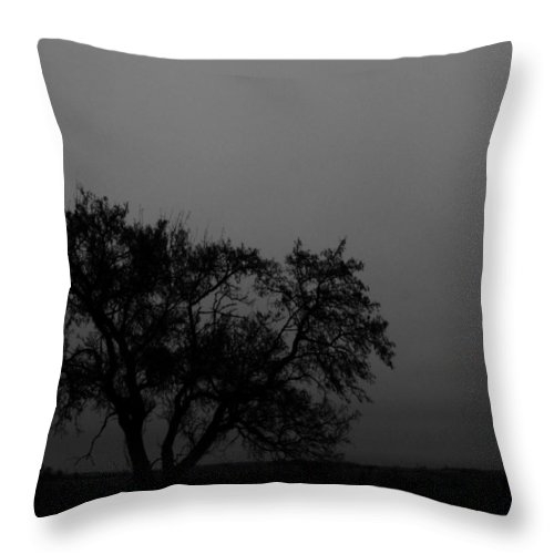 Elm Throw Pillow featuring the photograph Whisper Of The Elm by The Artist Project