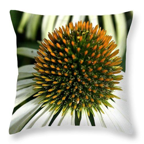 Plant Throw Pillow featuring the photograph White Cones by Susan Herber