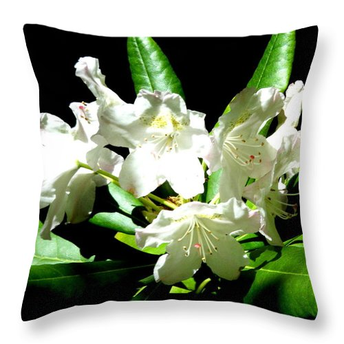 Landscapes Throw Pillow featuring the photograph White Flowers by April Patterson