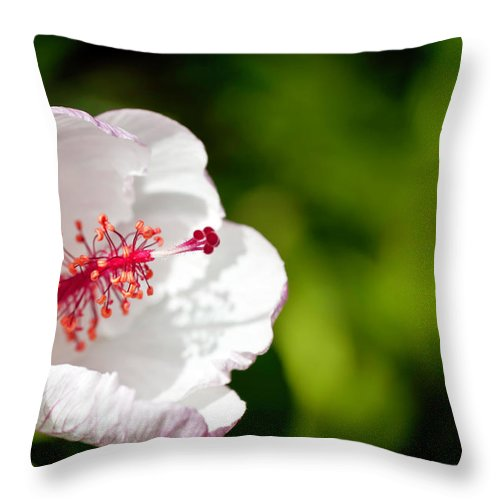 Hawaii Throw Pillow featuring the photograph White Hibiscus by Dan McManus