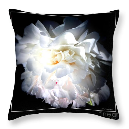 White Innocence Throw Pillow featuring the photograph White Innocence by Heinz G Mielke