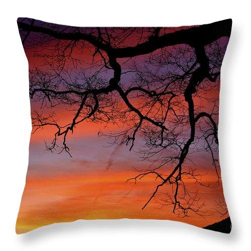 Sunrise Throw Pillow featuring the photograph White Oak Sunrise by Thomas R Fletcher