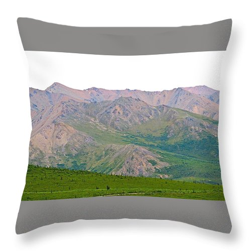 Alaska Throw Pillow featuring the photograph White Sky by Michael Anthony