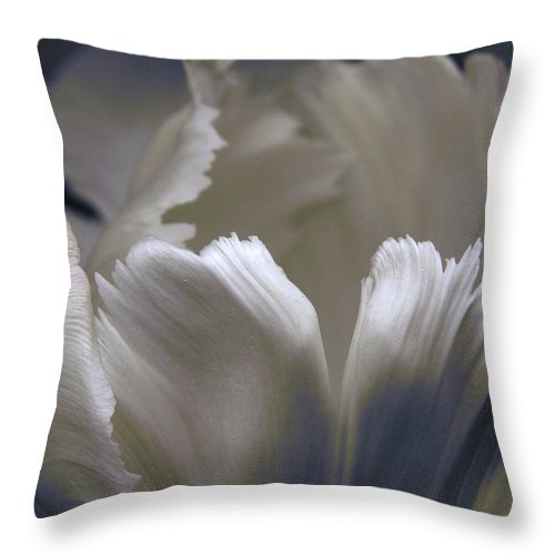 Tulip Throw Pillow featuring the photograph White Tulip by Nancy Griswold