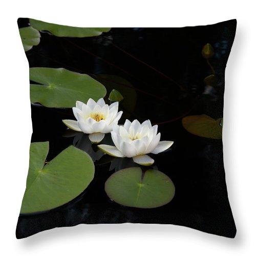 Lehtokukka Throw Pillow featuring the photograph White Water-lily 4 by Jouko Lehto