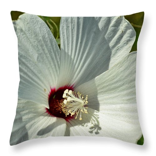 Botanical Throw Pillow featuring the photograph White Wildflower I by Debbie Portwood