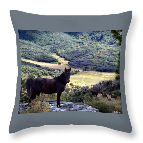 Hoses Throw Pillow featuring the photograph Wild At Heart by Bill Stephens