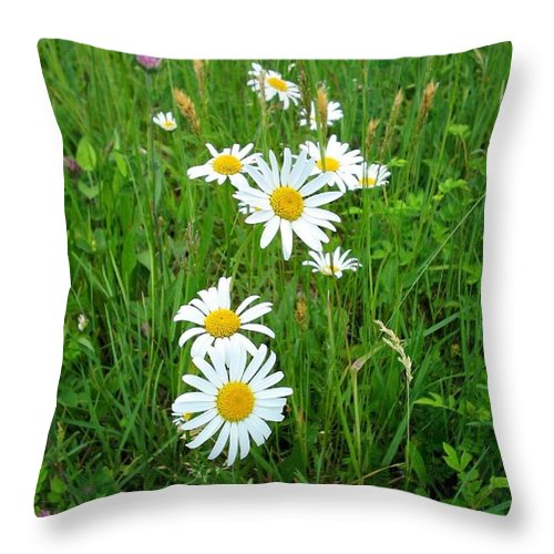 Flowers Throw Pillow featuring the photograph Wild Flowers by April Patterson