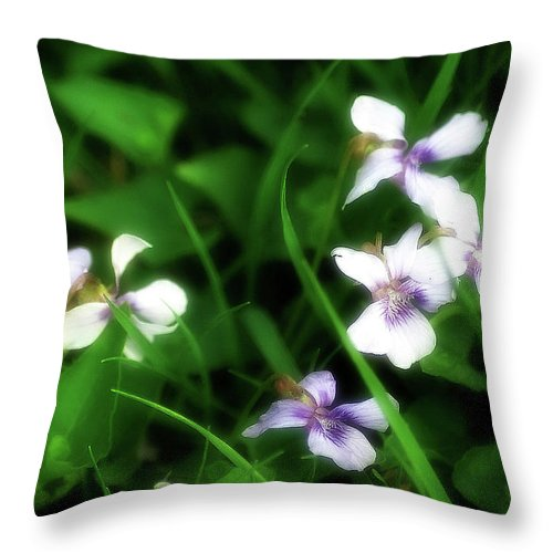 2d Throw Pillow featuring the photograph Wild Flowers by Brian Wallace