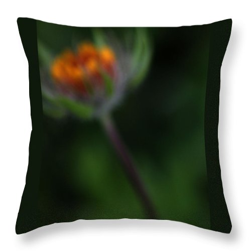 Sky Throw Pillow featuring the photograph Wild Glow by The Artist Project