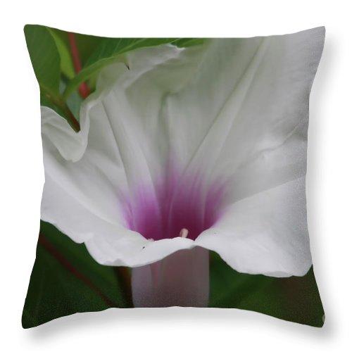 Flower Throw Pillow featuring the photograph Wild In Florida by Deborah Benoit