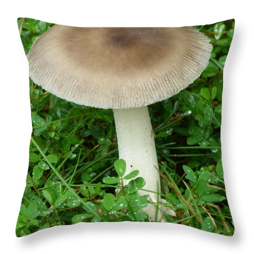 Mushroom Throw Pillow featuring the photograph Wild Mushroom by Richard Bryce and Family