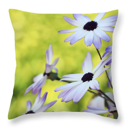 Throw Pillow featuring the photograph Wild Things by Heidi Smith
