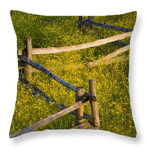 Blossom Throw Pillow featuring the photograph Wildflowers And A Wooden Fence At by David Chapman