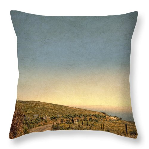 Road Throw Pillow featuring the photograph Winding Road To The Sea by Jill Battaglia