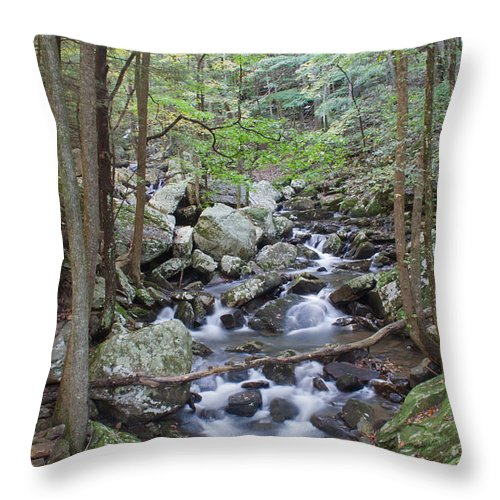 Stream Throw Pillow featuring the photograph Winding Stream by David Troxel