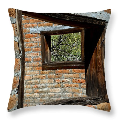Alamo Ranch Throw Pillow featuring the photograph Window Geometry At Alamo Ranch by Stephanie Salter