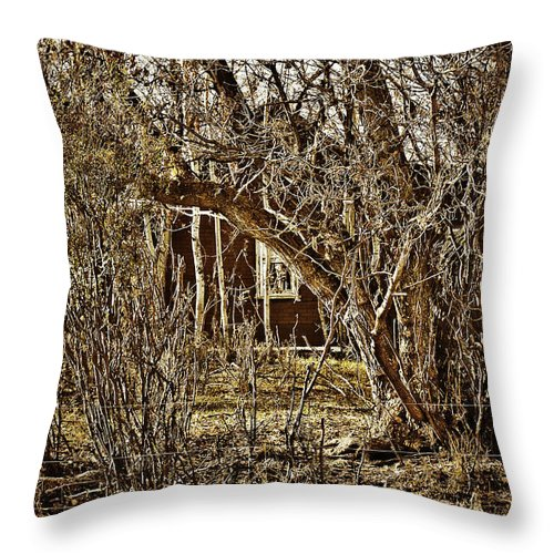 Throw Pillow featuring the photograph Window Of Roots by The Artist Project