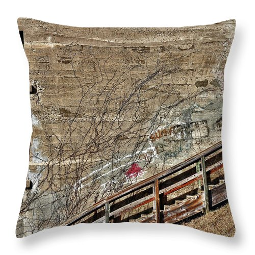 Rcnaturephotos Throw Pillow featuring the photograph Window's On An Incline by Rachel Cohen
