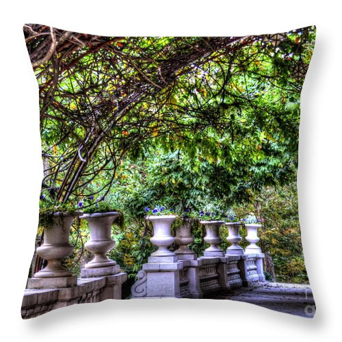 Vines Throw Pillow featuring the photograph Wine and Vine by Debbi Granruth