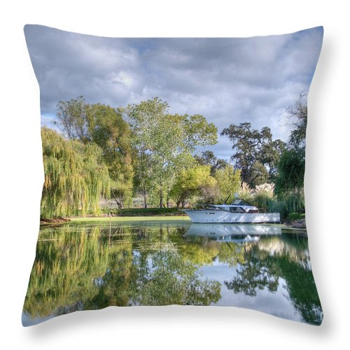 Pond Throw Pillow featuring the photograph Winery Pond by Diego Re