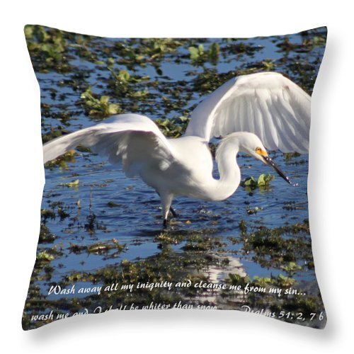 Wings Throw Pillow featuring the photograph Wings by Ken Merop