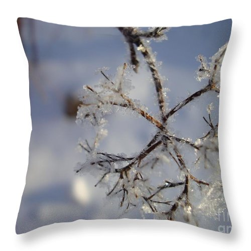 Winter Throw Pillow featuring the painting Winter Crystals by Susan Fisher