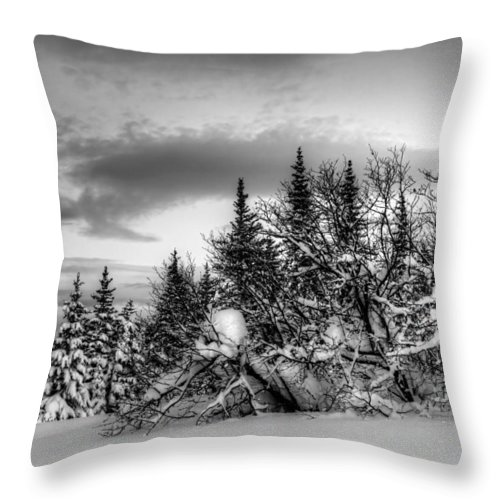 Moon Throw Pillow featuring the photograph Winter Evening by Michele Cornelius
