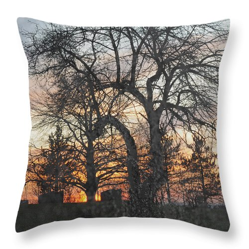 Tree Throw Pillow featuring the photograph Winter Freeze by Luke Moore