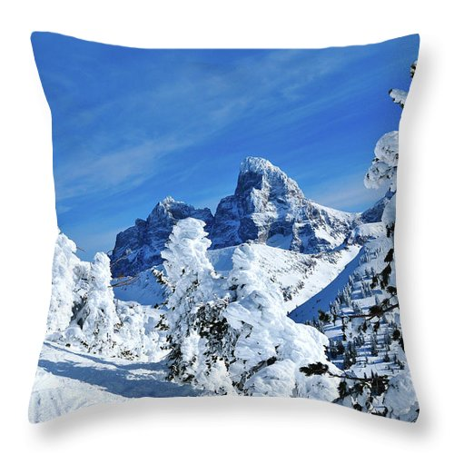 Grand Teton National Park Throw Pillow featuring the photograph Winter In The Tetons by Greg Norrell