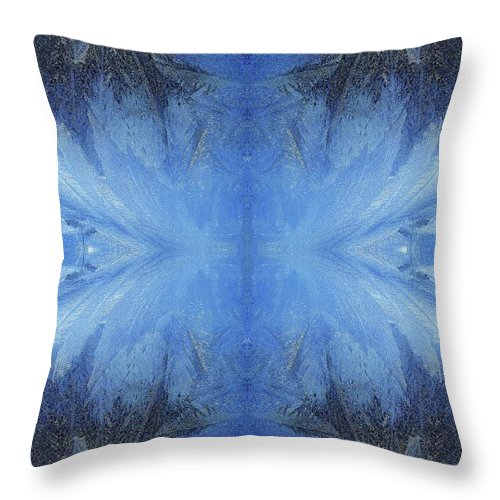Ice Throw Pillow featuring the photograph Winter Wings by Jane Alexander