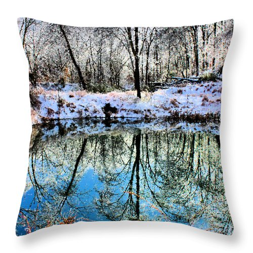Ice Throw Pillow featuring the photograph Winter Wonder by Kristin Elmquist