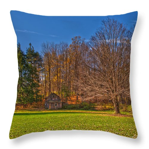 Cabin Throw Pillow featuring the photograph Winters Coming by Cindy Haggerty
