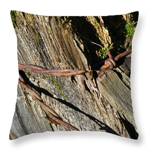 Wire Throw Pillow featuring the photograph Wired Fence Post by Tikvah's Hope