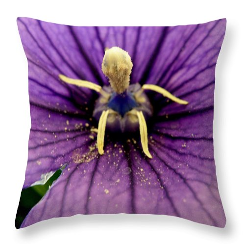 Flower Throw Pillow featuring the photograph Wondrous by Lainie Wrightson