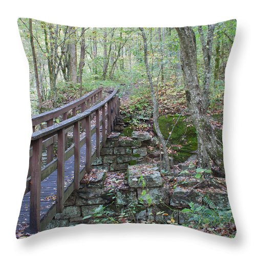 Crossing Throw Pillow featuring the photograph Wooden Bridge by David Troxel
