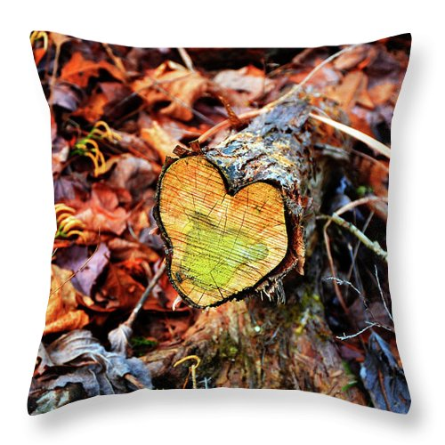 Heart Throw Pillow featuring the photograph Wooden Heart by Paul Mashburn